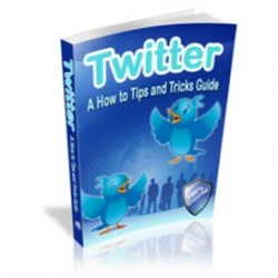 Get The Twitter Know-How