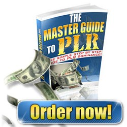 The Master Guide To PLR Private Label Rights .pdf + Resell Rights + Mini Site