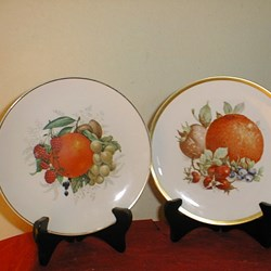 DECORATIVE FRUIT COLLECTOR PLATES