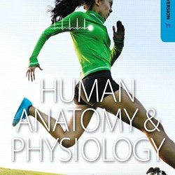 Human Anatomy & Physiology Laboratory Manual CAT ver (PDF eTextbook)
